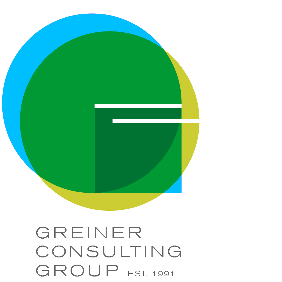 behavioral interview questions greiner consulting group the gold standard in career coaching