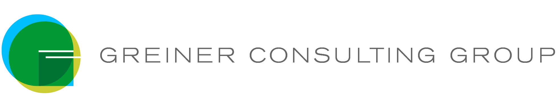 Greiner Consulting Group